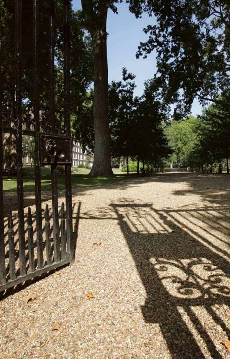 grays inn gardens london - a real england aesthetic and also one of the bloomsbury places to visit in this corner of London as picked by Jo Heckett of Cockpit Arts - it's also available to book as a venue - details in the post #englandaesthetic #bloomsbury #london #park #graysinn #gardens