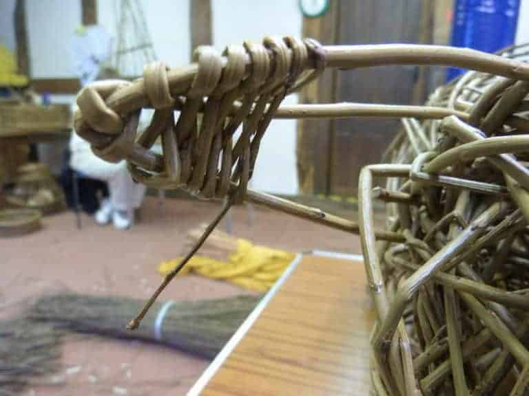 weaving the ear of willow piglet