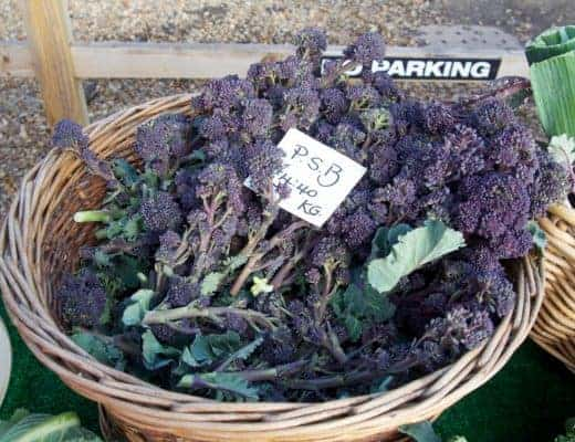 purple sprouting broccoli farmers market