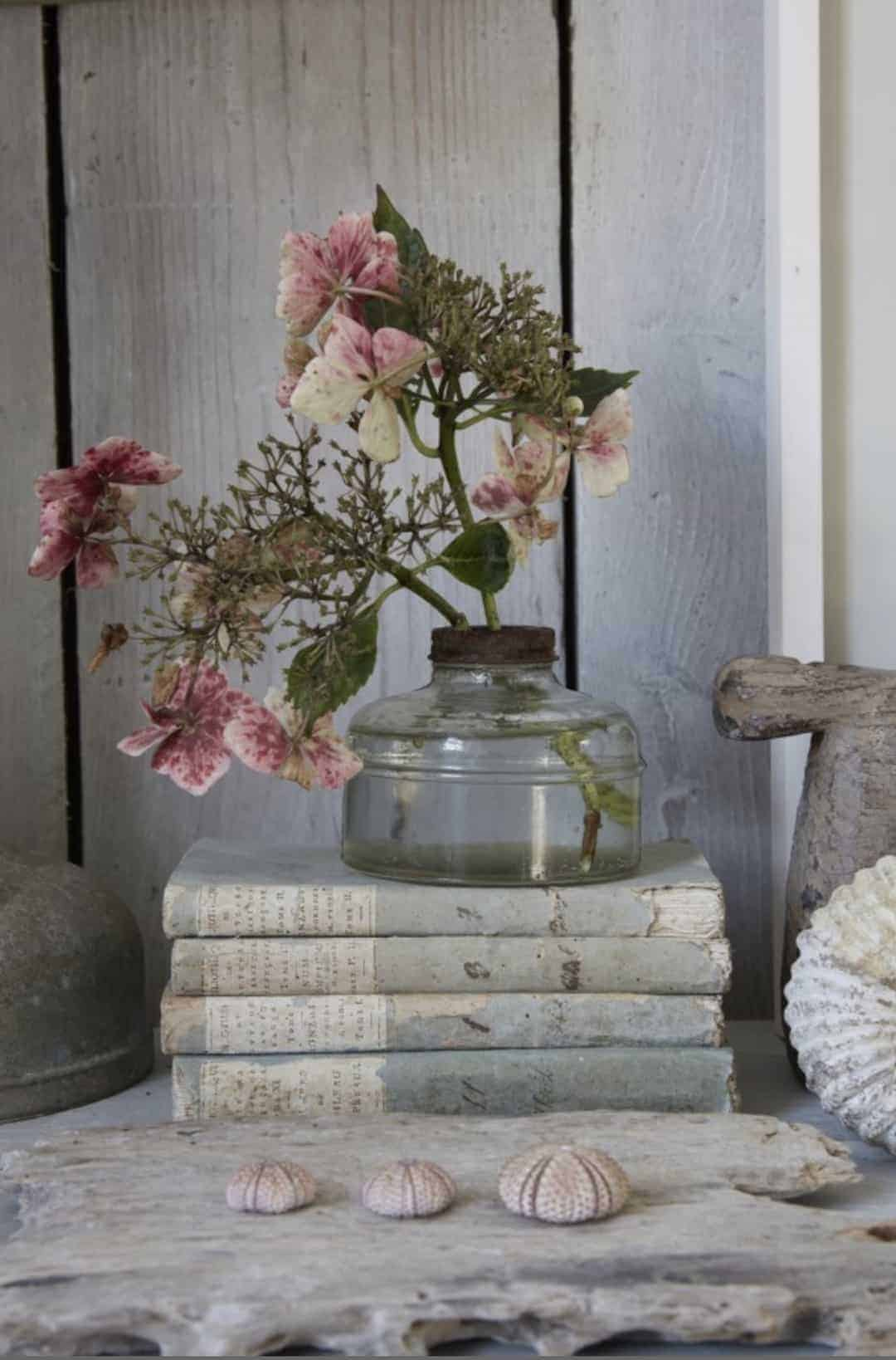 love this vintage seaside style with seashells, driftwood, vintage books and urchins. White washed wood finishes the look. Click through for more coastal decoration ideas you'll love