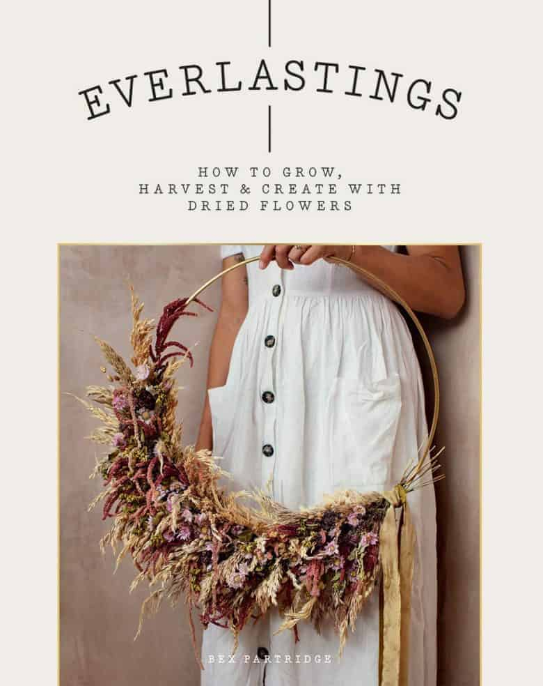 everlastings dried flowers book bex partridge - how to dry and create with dried flowers