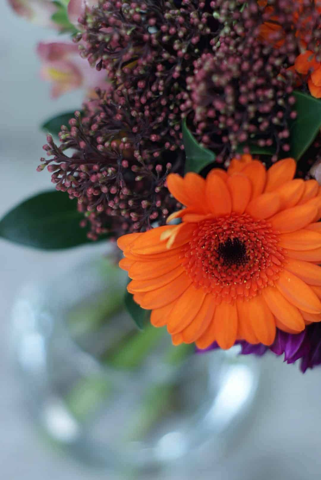simple bright orange and purple autumn flowers in glass vase