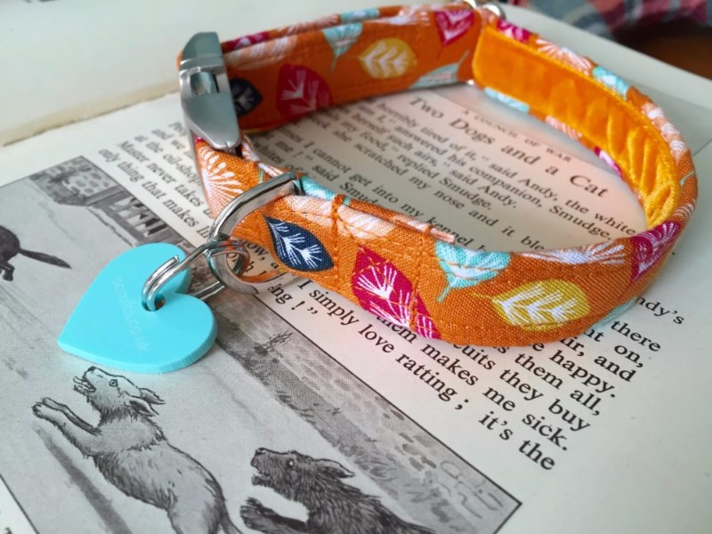 scrufts-orange-dog-collar
