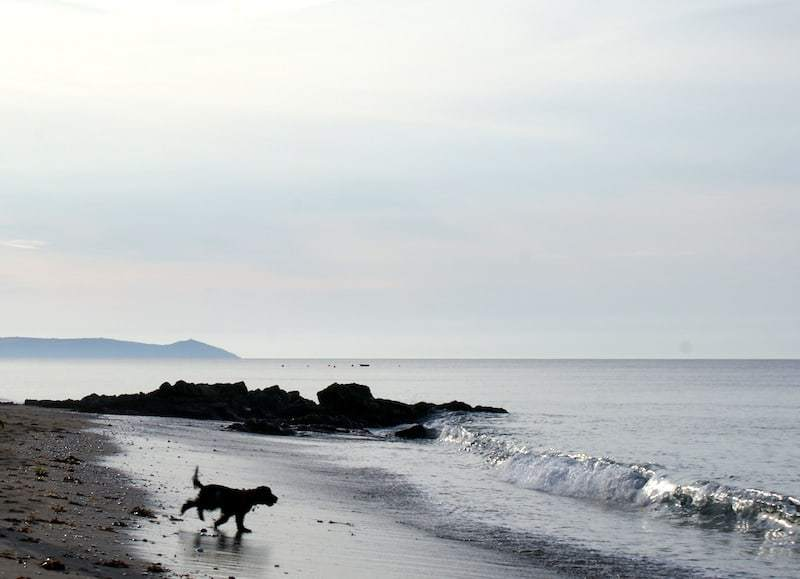 dog friendly Downderry beach Cornwall in the morning light