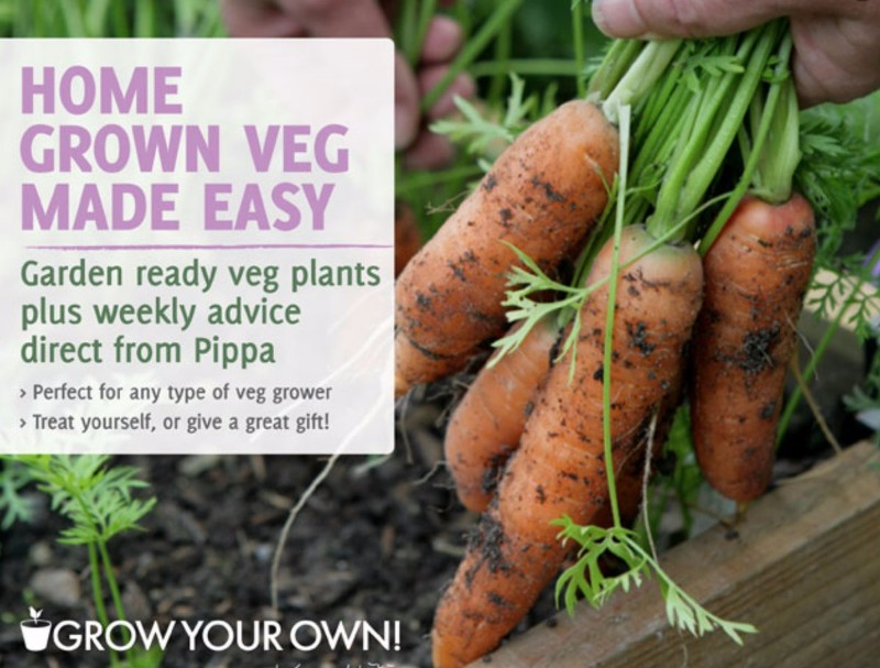 grow-your-own-with-pippa-greenwood