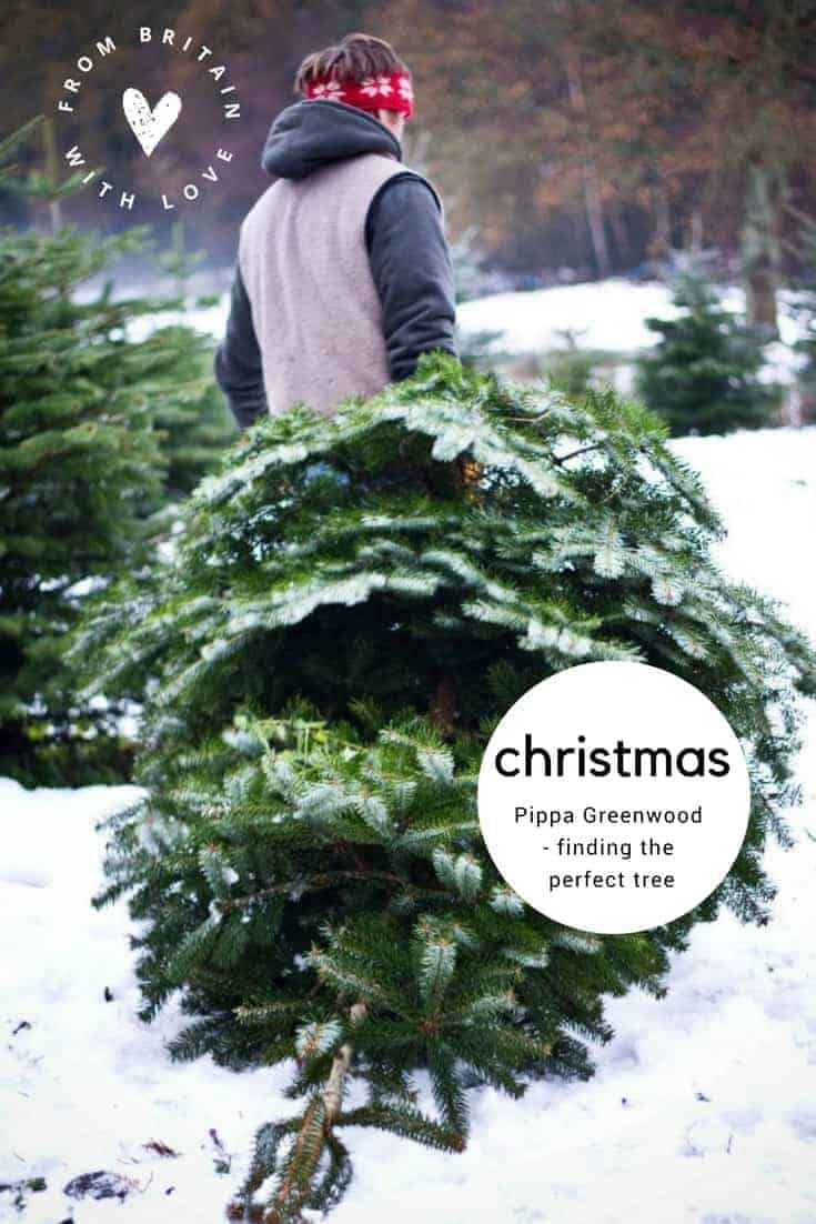 finding the perfect Christmas tree with gardener's question time panellist pippa greenwood. Click through to discover why she loves christmas, and discover her favourite gifts for gardeners