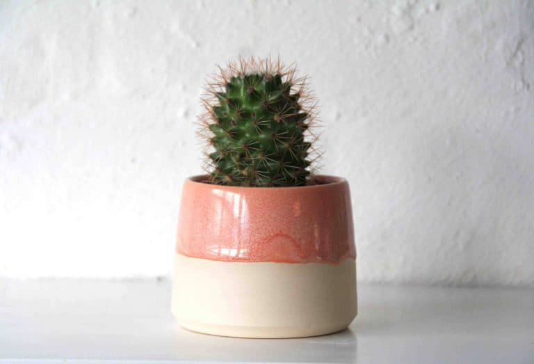 love this ceramic and coral terracotta glaze midcentury inspired plant pot handmade by Fich ceramics
