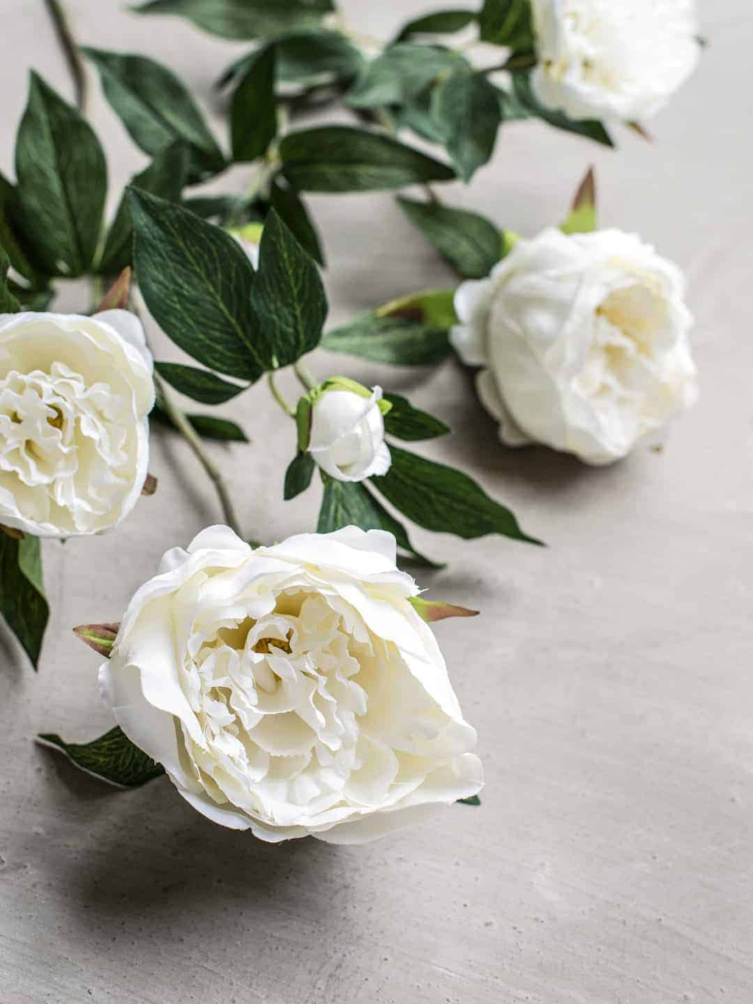 love these faux white peonies by phlippa craddock. Click through to find out more and to see other beautiful spring flower ideas you'll love