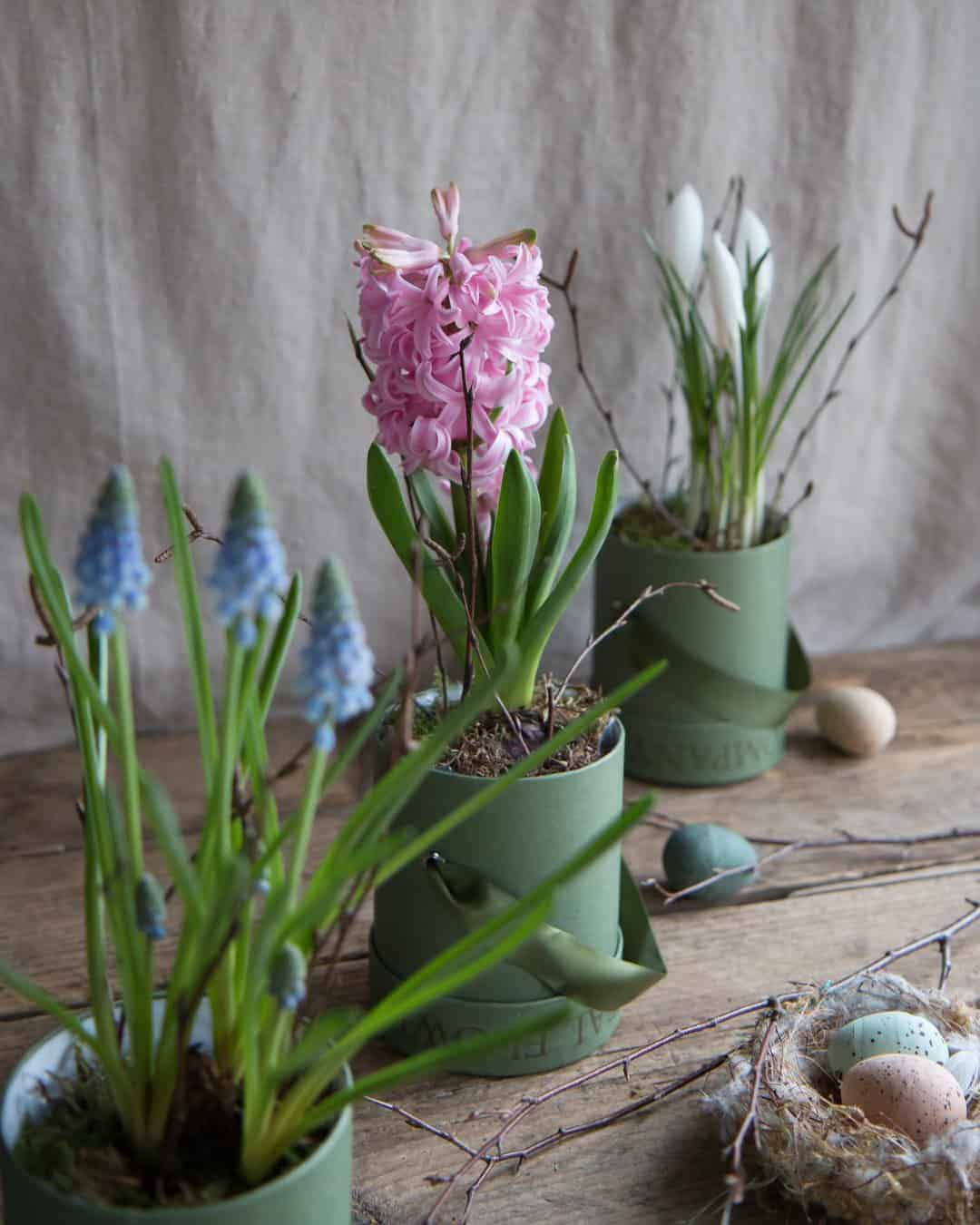 love these simple hyacinth, crocus and grape hyacinth bulbs in simple mini green hat boxes by The Real Flower Company. Click through for more beautiful spring flower arrangement ideas you'll love