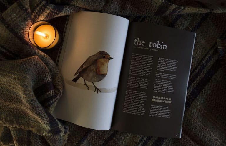 love this creative countryside magazine robin feature. click through to discover inspiration and local loves of editor Eleanor