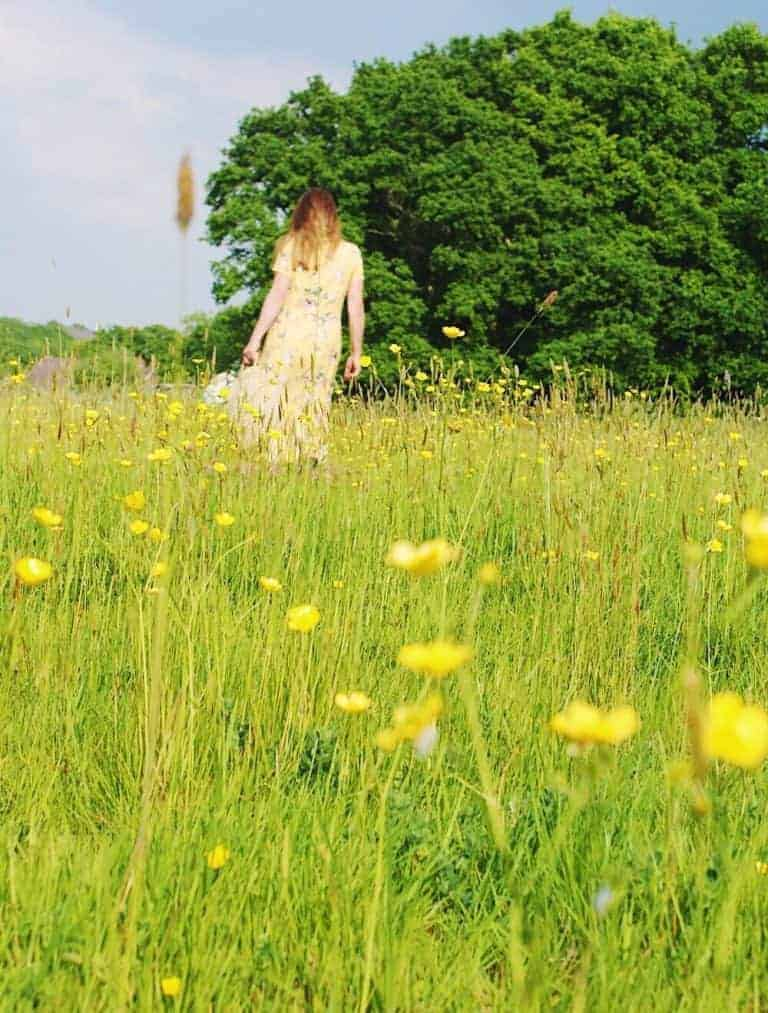 loved this wildflower meadow full of buttercups
