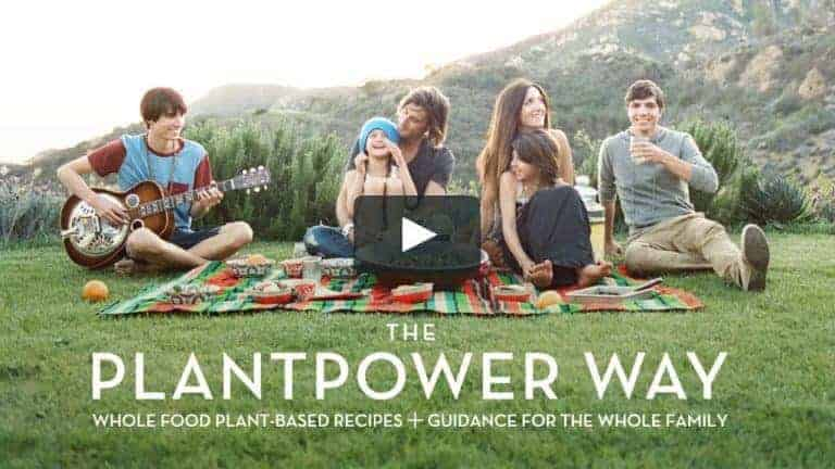 rich roll family plant power meal planner