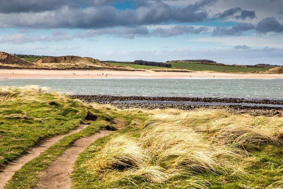 love this image of craster to dunstanburgh castle walk in norhumbria - click through for more beautiful seasonal and local loves shared by Rosebie Morton, founder of The Real Flower Company