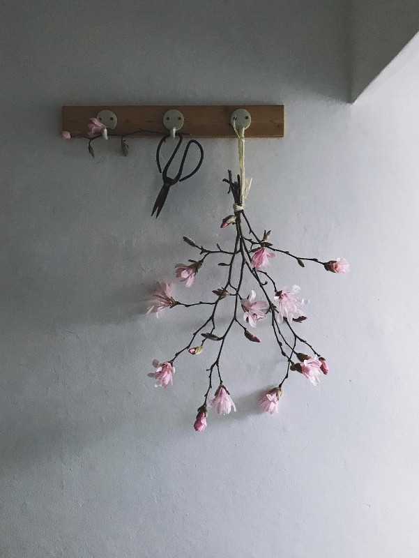 magnolia-branch-hanging-wooden-peg-circle-pine-trees