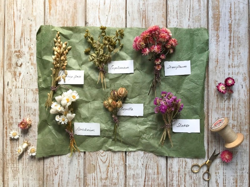 botanica-tales-dried-flower-wreath-workshops