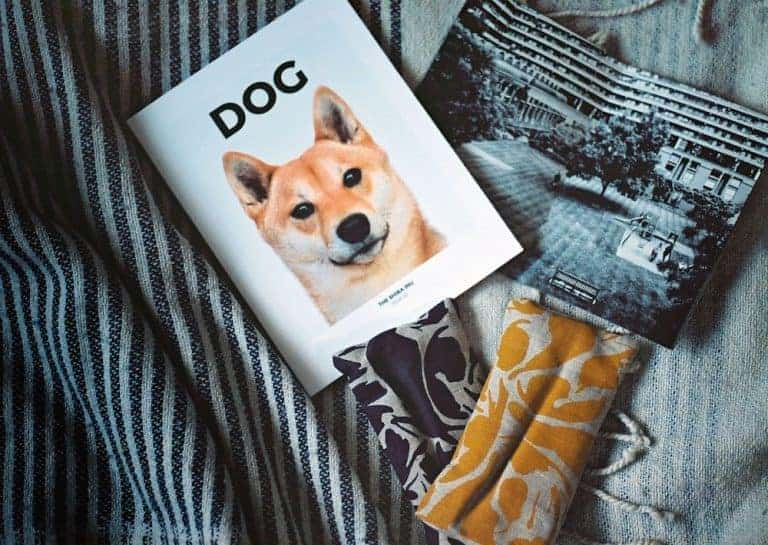 foundland dog independent magazine and linen wheat packs