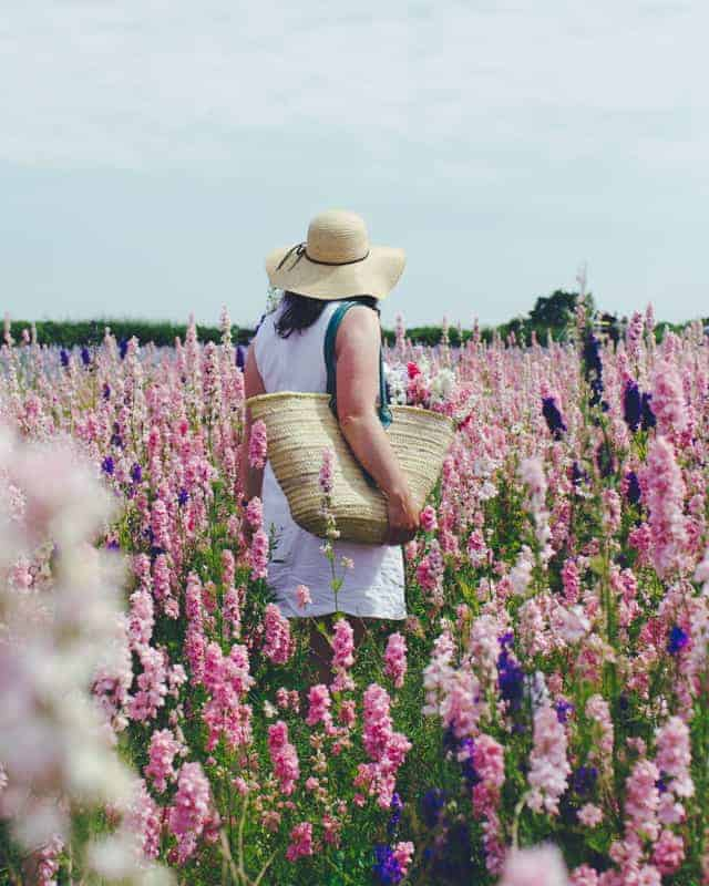Love this image of Laura in a flower field of pink and purple delphiniums. meet laura pashby circle of pine trees blogger, photographer and instagram coach. Click through to see lots of inspiring slow living images as well as info on how to get your free ebook how to create engaging content and photography for instagram and beyond #instagram #ebook #slowliving #photography #frombritainwithlove #circleofpinetrees #delphiniums #flowers #flowerfield