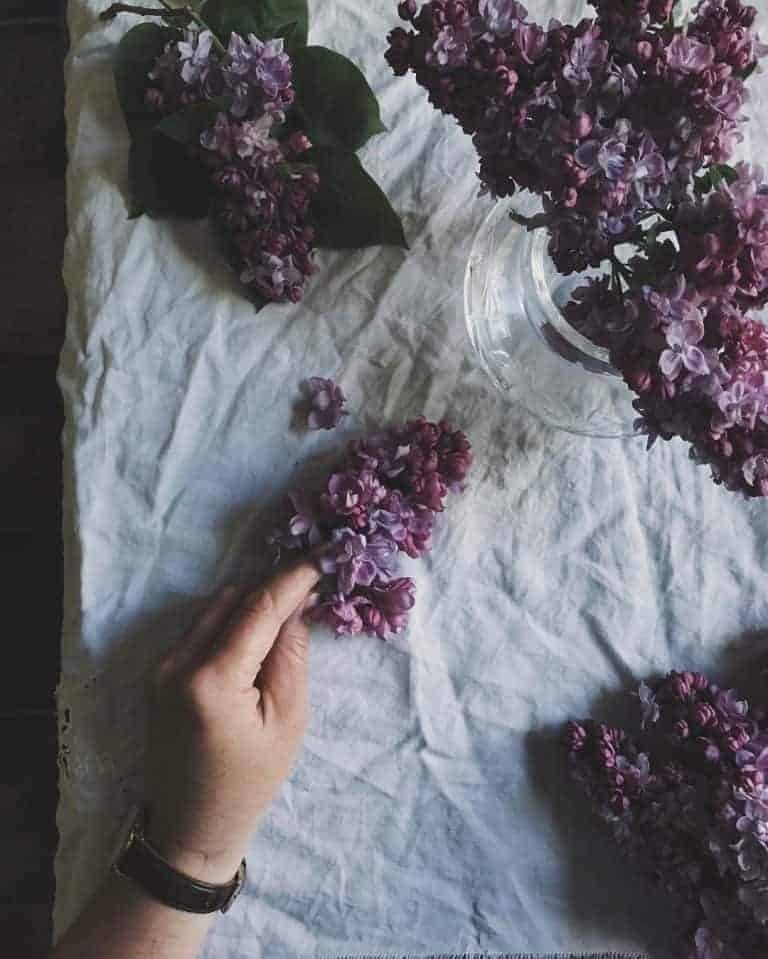 Love this image of purple lilac on white linen. meet laura pashby circle of pine trees blogger, photographer and instagram coach. Click through to see lots of inspiring slow living images as well as info on how to get your free ebook how to create engaging content and photography for instagram and beyond #instagram #ebook #slowliving #photography #frombritainwithlove #circleofpinetrees #lilac
