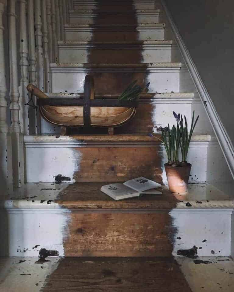 love this instagram photo of rustic stairs with vintage pots of grape hyacinths, wooden trug and wild flower book by Laura Pashby of Circle of Pines meet laura pashby circle of pine trees blogger, photographer and instagram coach. Click through to see lots of inspiring slow living images as well as info on how to get your free ebook how to create engaging content and photography for instagram and beyond #instagram #ebook #slowliving #photography #frombritainwithlove #circleofpinetrees #springflowers #rustic #stairs