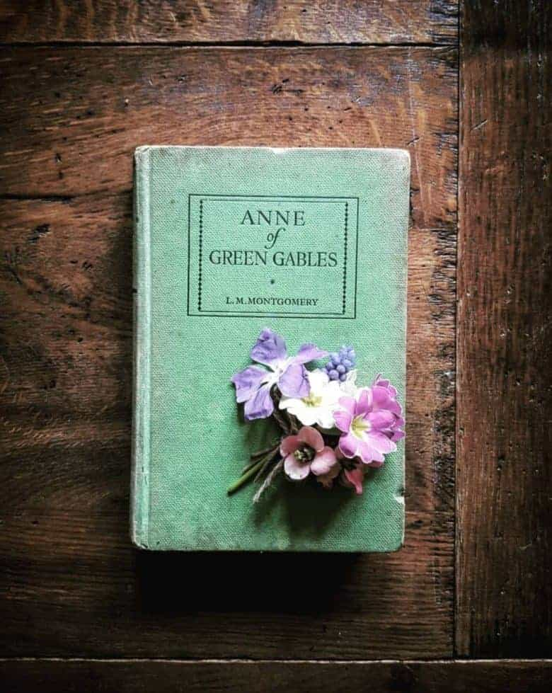 anne of green gables forget me not originals vintage books