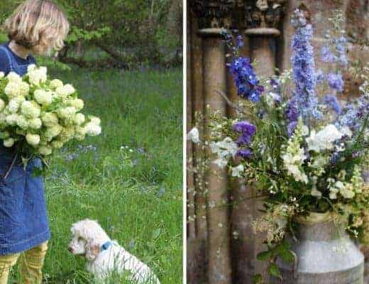 where to buy British flowers grown in the UK sustainably