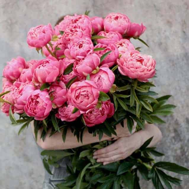 love these bright pink peonies by green and gorgeous grown in Oxfordshire - seasonal and naturally beautiful