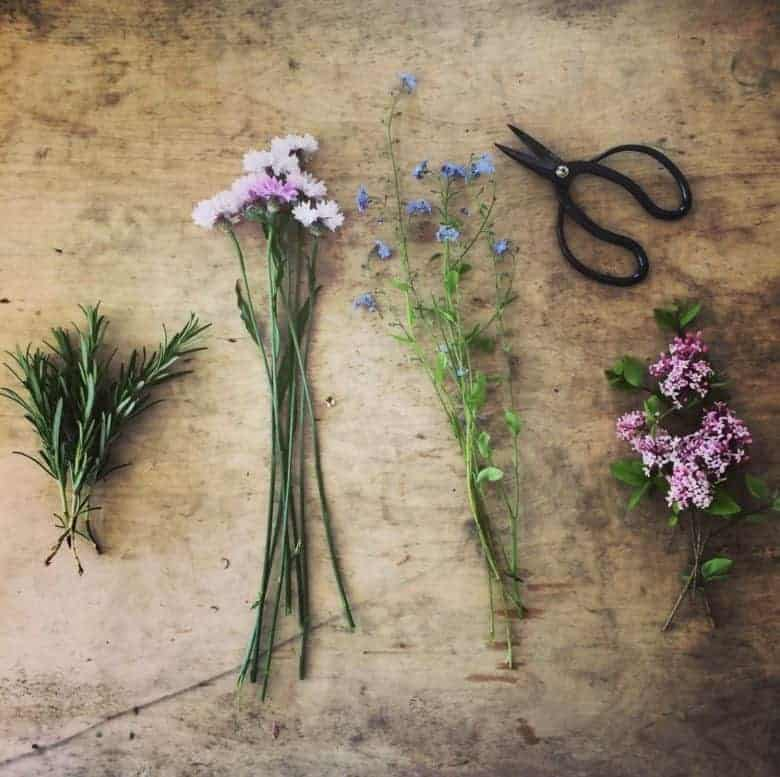 seasonal flowers grown in the UK by Pheasant Botanica - forget me not, lilac, rosemary ready to make button holes for a wedding #sustainable #welsh #wedding #flowers #britishflowers #lilac #forgetmenot #frombritainwithlove