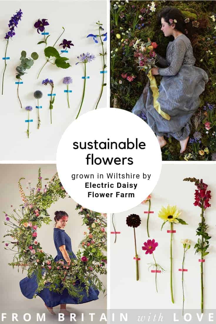 love the seasonal, sustainable British flowers grown in Wiltshire by Electric Daisy Flower farm. Click through to discover all you need to connect with them, buy cut flowers, arrange your wedding flowers, a flower workshop or buy from their online shop. #sustainable #flowers #british #seasonal #frombritainwithlove #flowerfarm