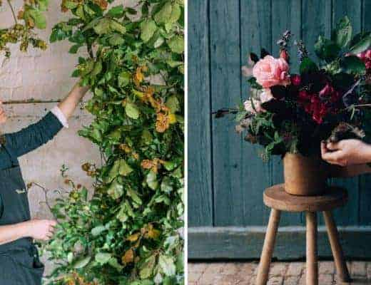 foam free floristry ideas with sarah diligent floribunda rose and william mazuch mechanics of floral design