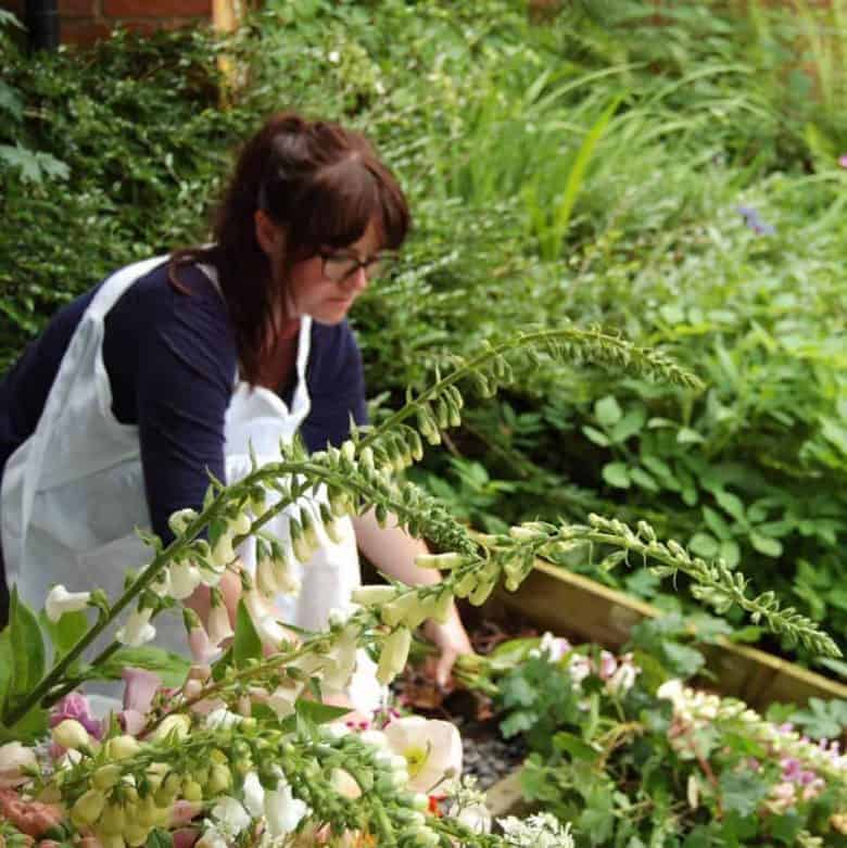 expert tips on how to create a flower cutting garden with pheasant botanica in wales and other flower growing experts with flower ideas and expert tips to help you #cuttinggarden #flowers #grow #howtogrowflowers