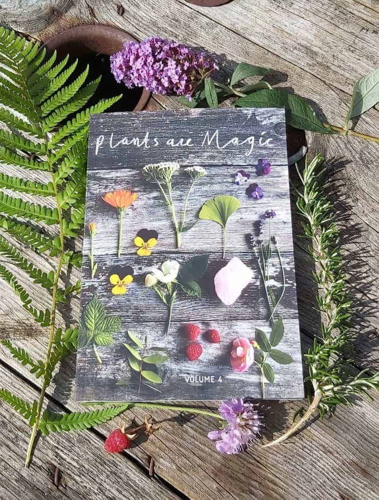 plants are magic book and handmade ethical homeware by these two hands for autumn