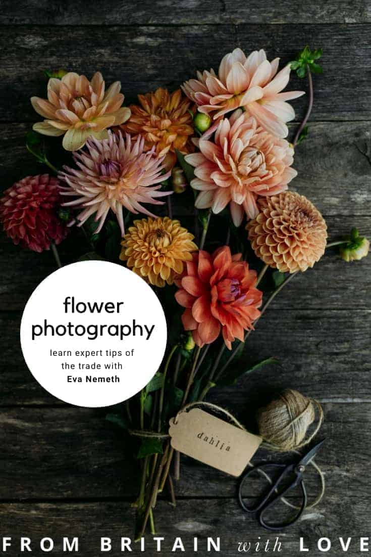 dahlias flatlay still life instagram photography - flower photography tips and ideas from photographer Eva Nemeth including expert tips on how to create depth of field, work with light, texture, aperture and f stops to take beautiful flower and garden photographs #flowerphotography #photography #tips #frombritainwithlove #dahlias
