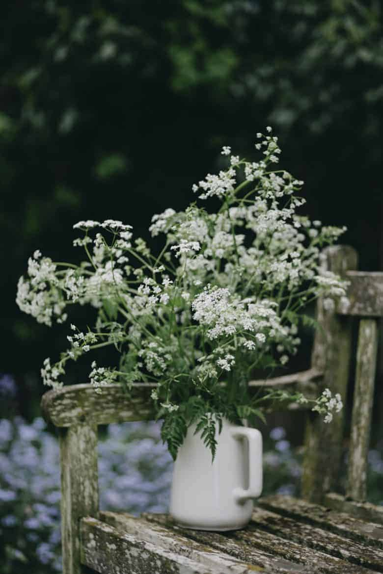 cottage garden bench with white country flowers in jug queen annes lace- flower photography tips and ideas from photographer Eva Nemeth including expert tips on how to create depth of field, work with light, texture, aperture and f stops to take beautiful flower and garden photographs #flowerphotography #photography #tips #frombritainwithlove #queenanneslace #cottagegarden