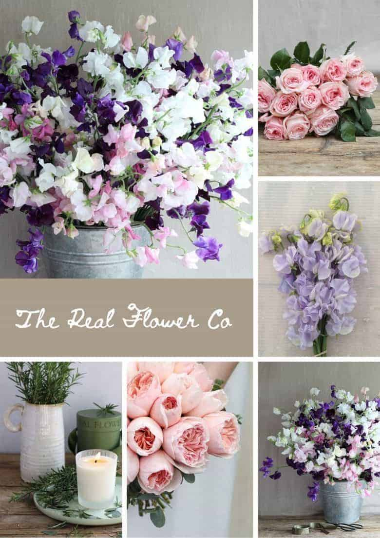scented roses and sweet peas from the real flower company click through to enjoy their virtual market stall and to buy from their hampshire flower farm and fair trade david austin rose farm #scentedroses #sweetpeas #realflowecompant #sustainable #localflowers