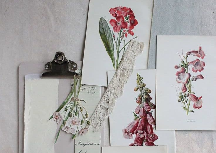 the-linen-garden-botanical-styling