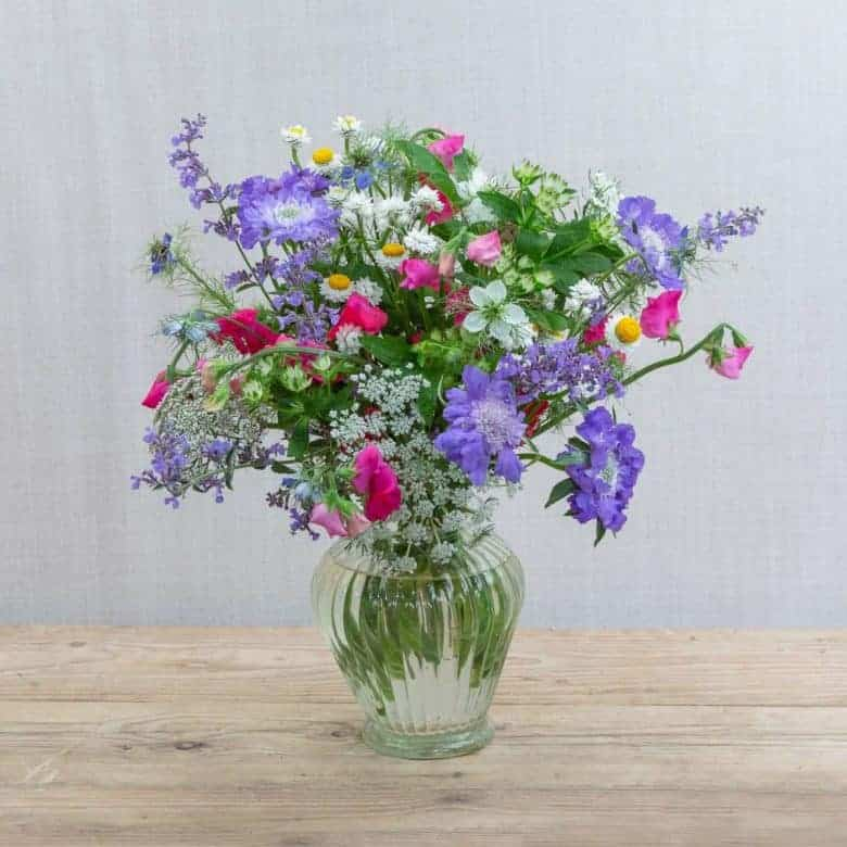 flowers fresh from the farm the real flower company sustainable british flowers foam free