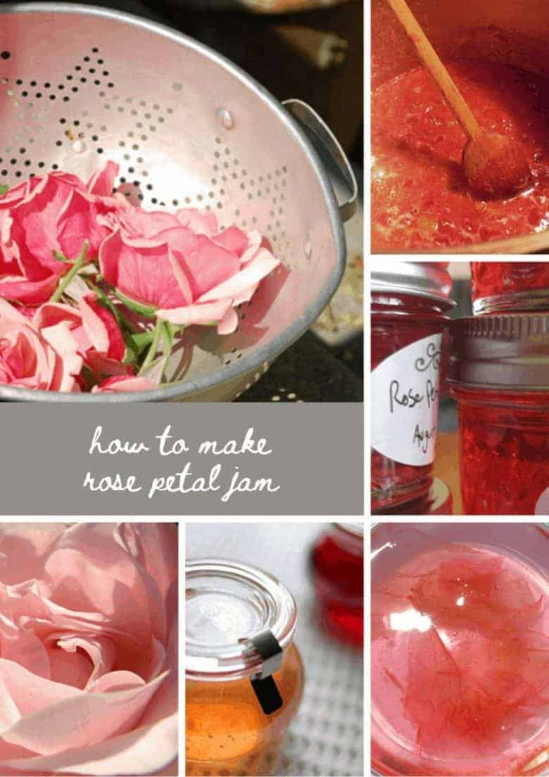 flower crafts how to make rose petal jam jelly recipe using fresh rose petals #flowercrafts #rose #petal #jam #frombritainwithlove #recipe