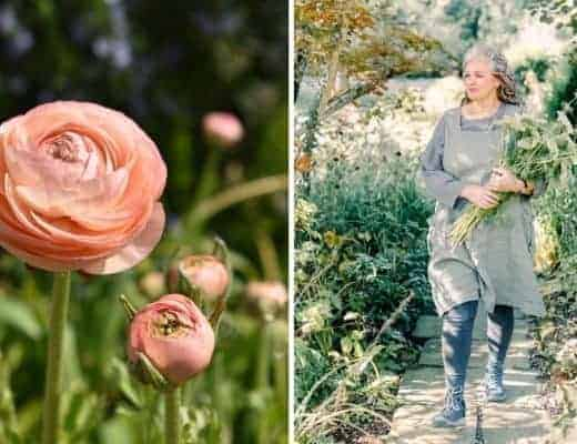 flower garden therapy tips and ideas by Rachel Petheram of Catkin Flowers