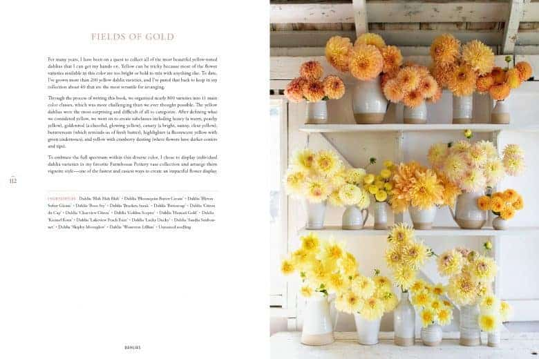 discovering dahlias by floret flower farm - how to grow dahlias and how to arrange them beautifully with all you need to know