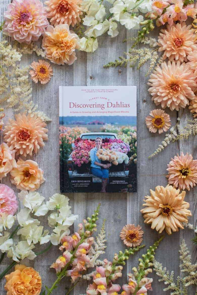 Discovering Dahlias book by erin benzakein of floret flower farm apricot salmon pink dahlias with all the information and expert tips you need to grow and arrange your own beautiful dahlias #dahlias #grow #arrange #floret #erinbenzakein
