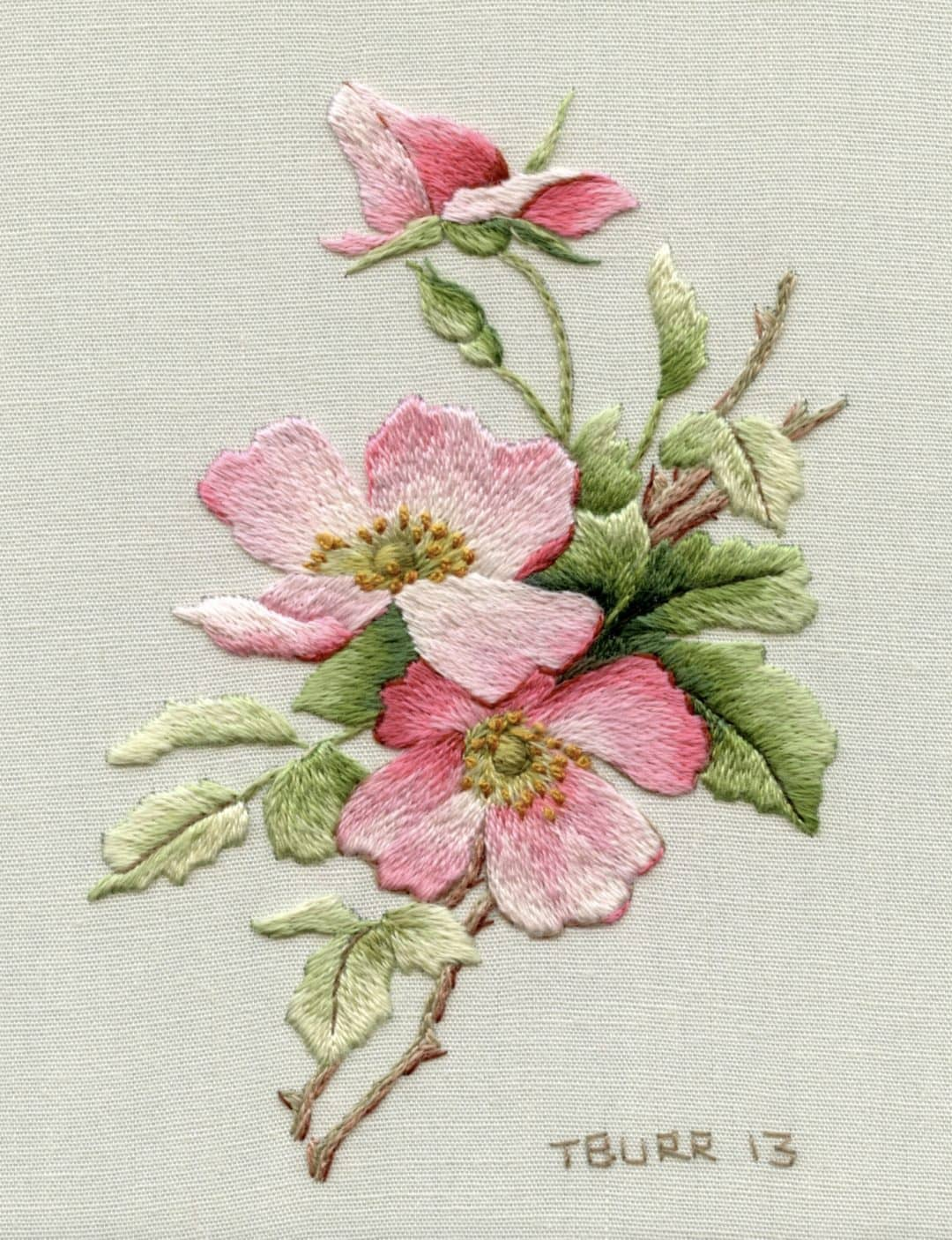 love this wild rose dog rose embroidery patterns by Trish Burr - just one of the beautiful crewel embroidery ideas I've shared with all the links you need to buy the patterns and to get your free PDF download patterns too! #crewel #embroidery #pattern #wildrose #rose