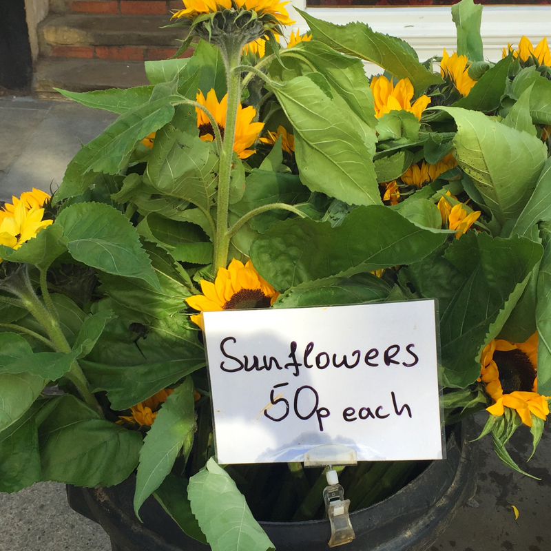 guildford-farmers-market-sunflowers